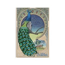 Pavo the Peacock Rectangle Magnet