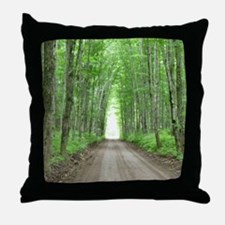 Cathedral Road Throw Pillow