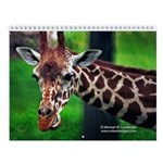 Animals Wall Calendar