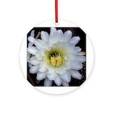 Cactus Flower 4353 Ornament (Round)