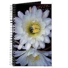 Cactus Flower 4353 Journal