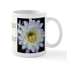 Cactus Flower 4353 Mug