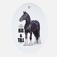 Shire Big & Tall Oval Ornament