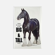 Shire Big & Tall Rectangle Magnet