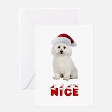 Nice Bichon Frise Greeting Card