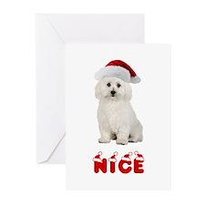 Nice Bichon Frise Greeting Cards (Pk of 10)
