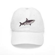 SHARK (24) Baseball Cap