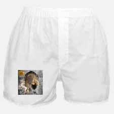 Medieval Cairn Terrier Boxer Shorts