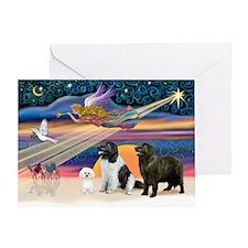 XmasStar-2 Newfies+Bichon Greeting Card