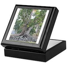 The Big Sunny Tree Keepsake Box