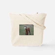 Funny Huacaya Tote Bag