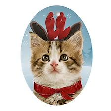 Reindeer Kitten Oval Ornament