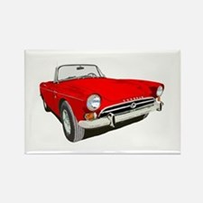 Cute Sunbeam tiger Rectangle Magnet