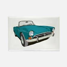 Funny Sunbeam tiger Rectangle Magnet