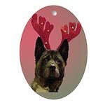 Maggie the Akita/Reindeer Oval Ornament