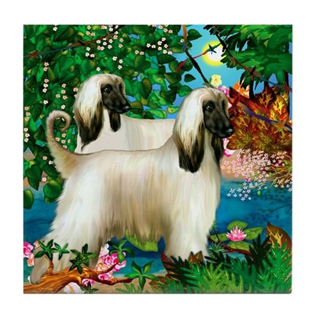 AFGHAN HOUND DOGS PARADISE Tile Coaster