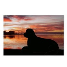 newfoundland sunset Postcards (Package of 8)