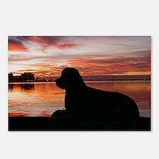 newfoundland sunset Postcards (Package of 8)