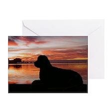newfoundland sunset Greeting Cards (Pk of 10)