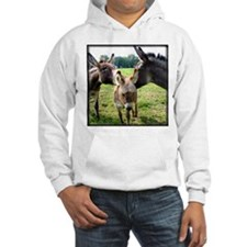 Miniature Donkey Family Hoodie