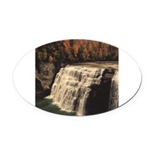 "IRS 3"" Lapel Sticker (48 pk)"