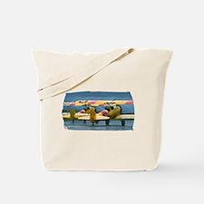 2 Stearman Tote Bag