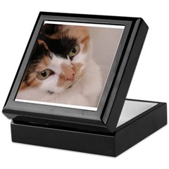 Calico Cat Keepsake Box