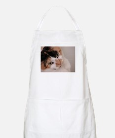 Calico Cat BBQ Apron