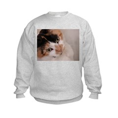 Calico Cat Sweatshirt