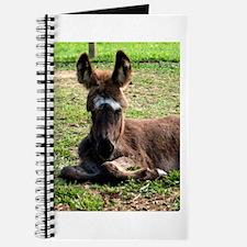 Sleepy Donkey Baby Journal