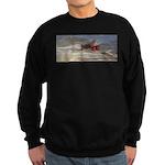 Reprise Skies Sweatshirt (dark)