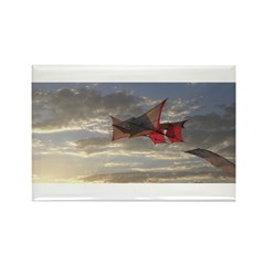 Reprise Skies Rectangle Magnet (100 pack)