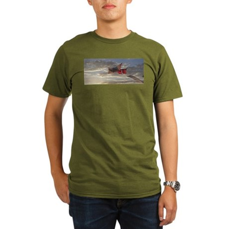 Reprise Skies Organic Men's T-Shirt (dark)