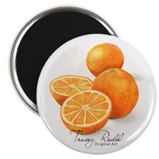 Sliced Oranges - Magnet