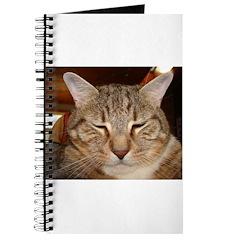 Tabby Tiger Cat Journal