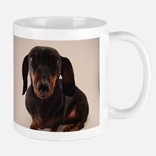 In Your Face Doxie Mugs