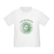California Green Solar Energy T