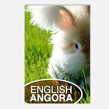 English Angora Postcards (Package of 8)