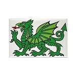 Green Dragon Rectangle Magnet (10 pack)