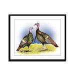 Rio Grande Wild Turkeys Framed Panel Print
