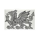 Grey Dragon Rectangle Magnet (100 pack)