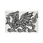 Grey Dragon Rectangle Magnet (10 pack)