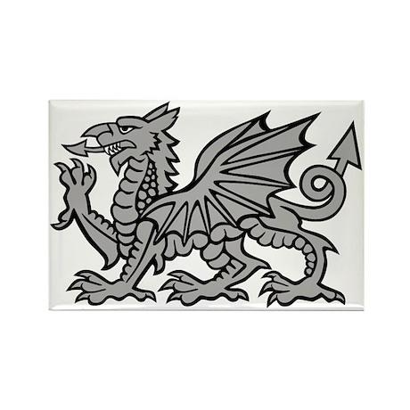 Grey Dragon Rectangle Magnet