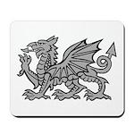 Grey Dragon Mousepad