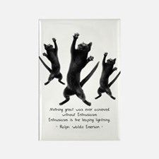 Enthusiastic Cats Rectangle Magnet