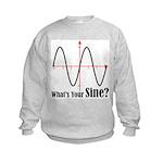 What's Your Sine? Kids Sweatshirt