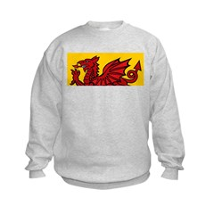 Red Welsh Kids Sweatshirt