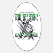 Spray Planes Oval Decal