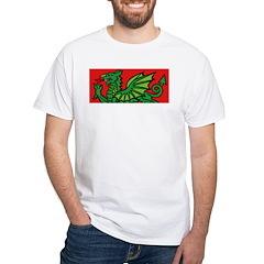 Green on Red Dragon Shirt