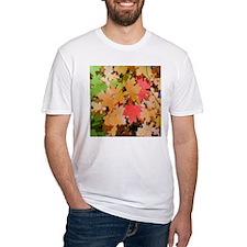 Fall Colors Leaves Shirt